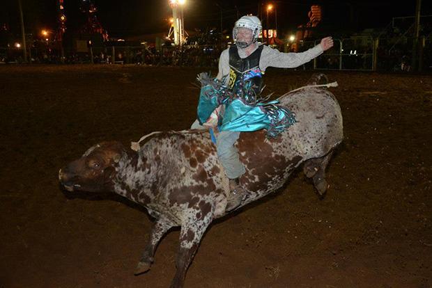 Chinchilla Rodeo
